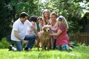 Egy család, ahol nem a kutya, hanem a Biblia van a központban!